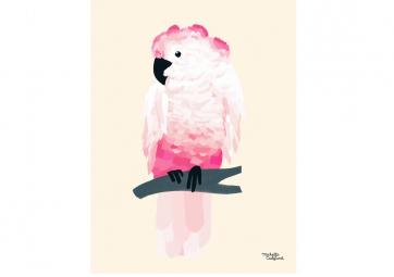 Affiche Perroquet rose - MICHELLE CARLSLUND