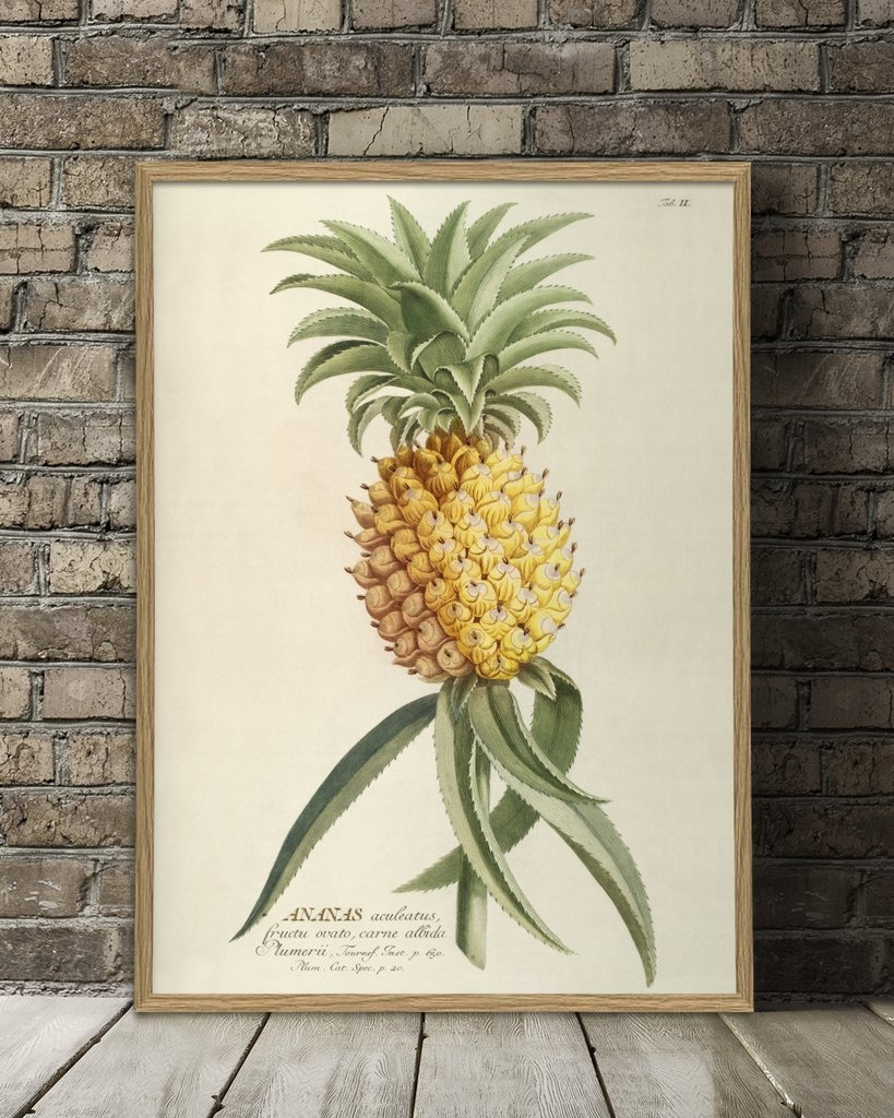 Affiche 30x40 Ananas - THE DYBDAHL