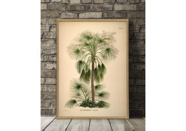 Affiche Palmiers + Cadre 112x158cm - THE DYBDAHL