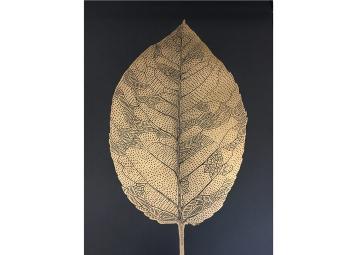 Affiche feuille de bouleau doré sur fond noir - MONIKA PETERSEN