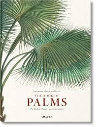 Livre Book of Palms - TASCHEN