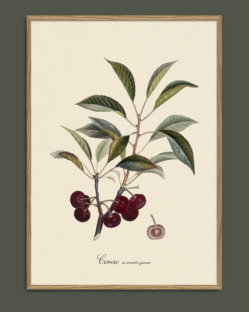 Affiche Cerise 30x40cm - THE DYBDAHL