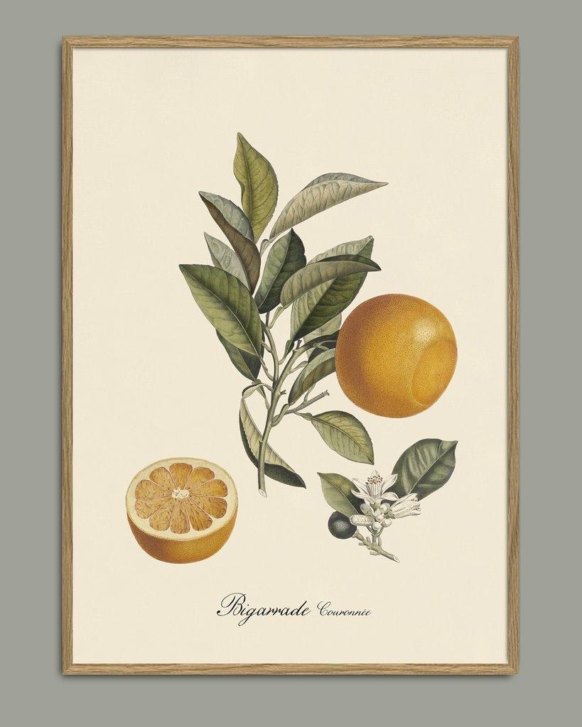 Affiche Orange 30x40cm - THE DYBDAHL