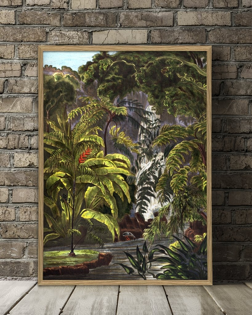 Affiche Jungle 50x70 cm - THE DYBDAHL
