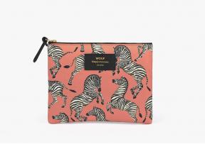 Grande pochette Zebra - WOUF
