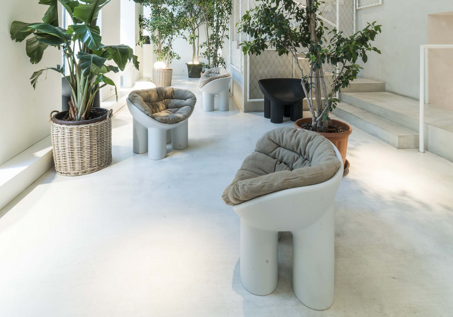 Fauteuil design Roly Poly - DRIADE