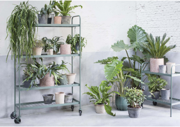 Etagère à plantes kaki - SERAX